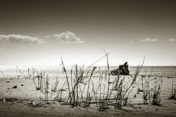 fotografia_juanandres_momentos_paisajes_16b